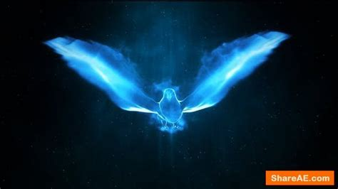 Videohive Magic Bird Logo » free after effects templates