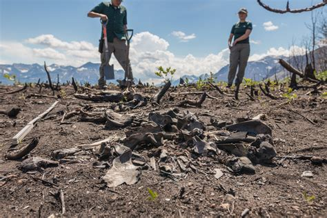 Archeologists uncover new history in Waterton Lakes