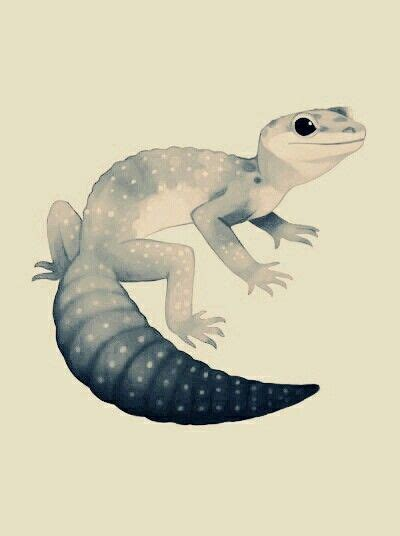 Black and white gecko tattoo?   Animal drawings, Cute